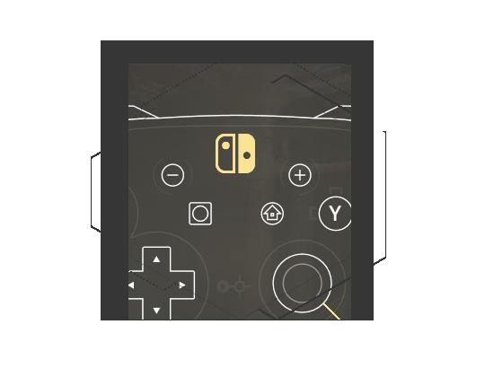 Remap Nintendo Switch Pro controller
